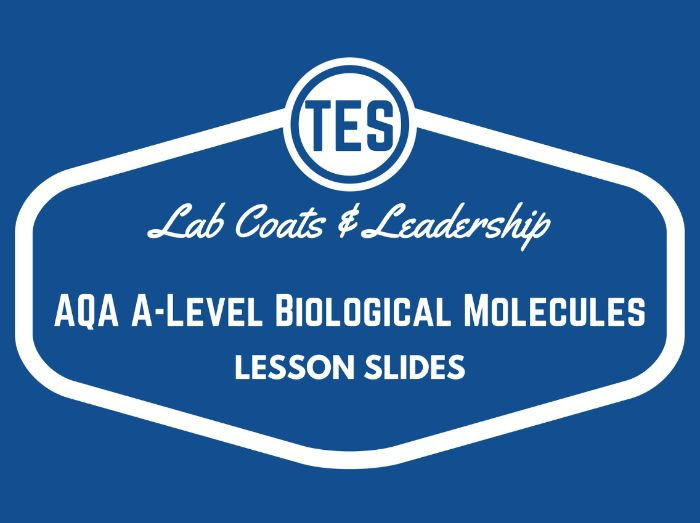 Saturated & Unsaturated Fats/Lipids Lesson Slides (AQA Biology)