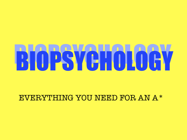 Biopsychology- AQA A Level Psychology