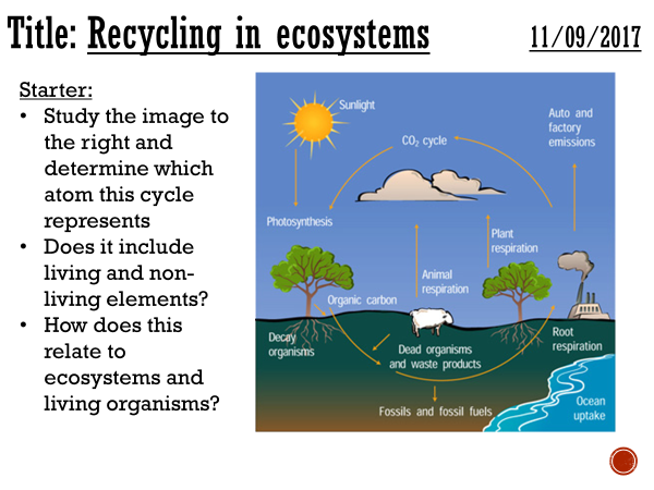 Recycling in ecosystems - complete lesson (A2)