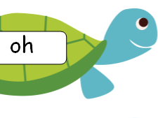 Phase 5 Tricky Words on Tortoises