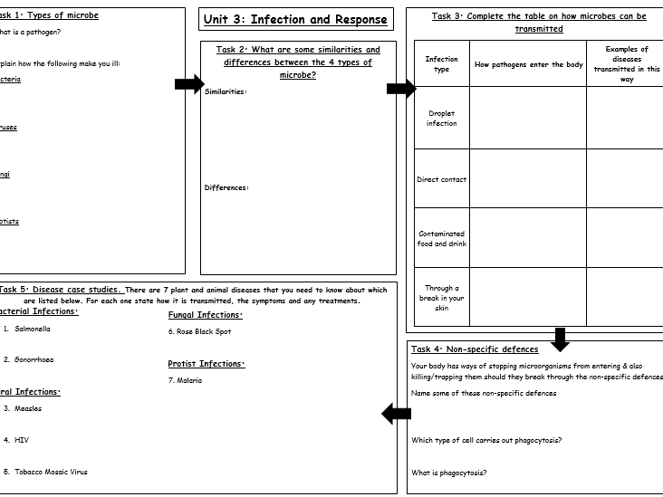 Unit 3: Infection and Response (Combined and Biology) Revision resource