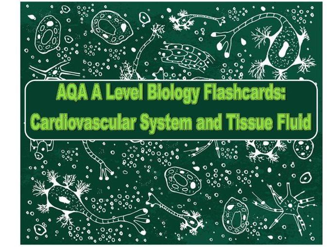 Flashcards AQA Cardiovascular system and Tissue Fluid A Level Biology