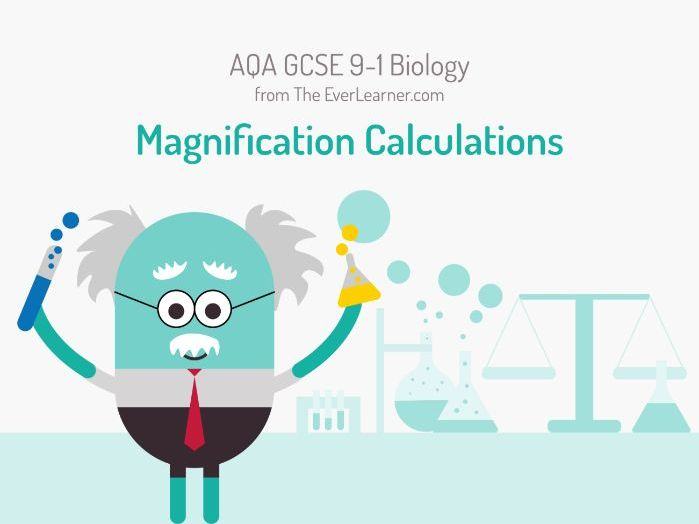 AQA GCSE 9-1 Biology: Magnification Calculations