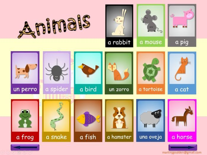 Spanish - Interactive Whiteboard Game - Animal Names