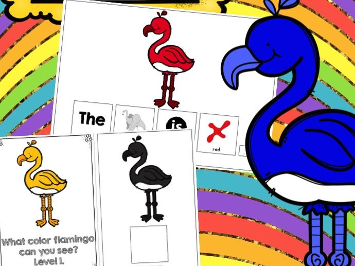 Flamingo Adapted Books Colour Recognition Color Recognition
