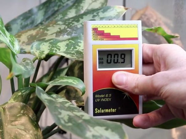 Learn at Chester Zoo - Heat & UV Light Science