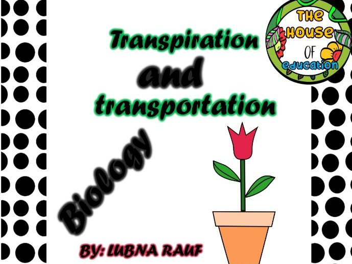 Biology! Transpiration and Transportation