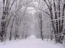 Snowy Forest setting description WAGOLL