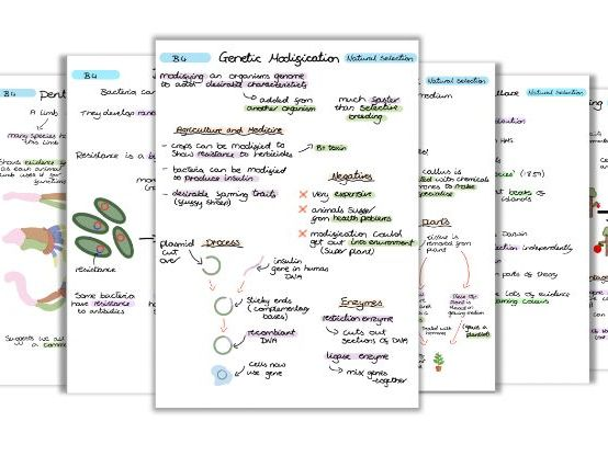 GCSE Biology Natural Selection and Genetic Modification Notes