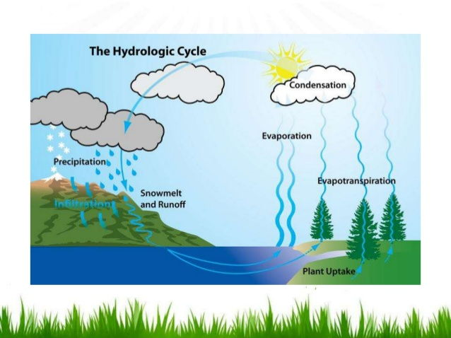 The hydrological cycle, Causes of river flooding, Factors effecting flood risk