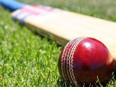 Cricket Bundle
