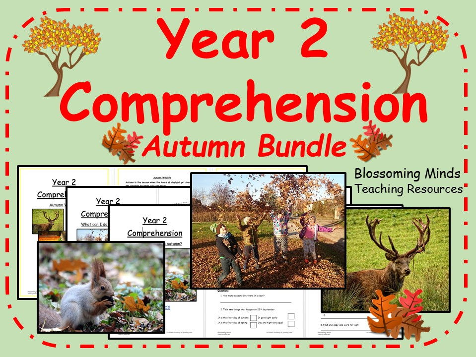 Year 2 Autumn comprehension bundle