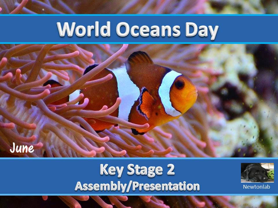 World Oceans Day - 8th June - Key Stage 2