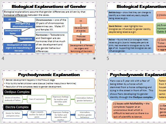 GENDER Revision Powerpoint for whole topic. Teacher and Student Versions. AQA Psychology.