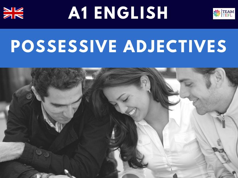 Possessive Adjectives A1 Beginner ESL Lesson Plans
