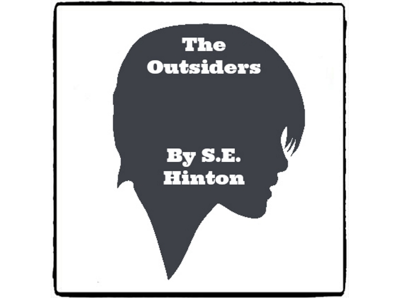 The Outsiders * (Reed Novel Studies)