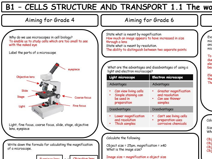 Mark scheme AQA GCSE 9-1 Biology B1 Revision Sheets (differentiated)