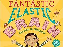 Engaging and visual powerpoint for 'Your Fantastic Elastic Brain' SOW