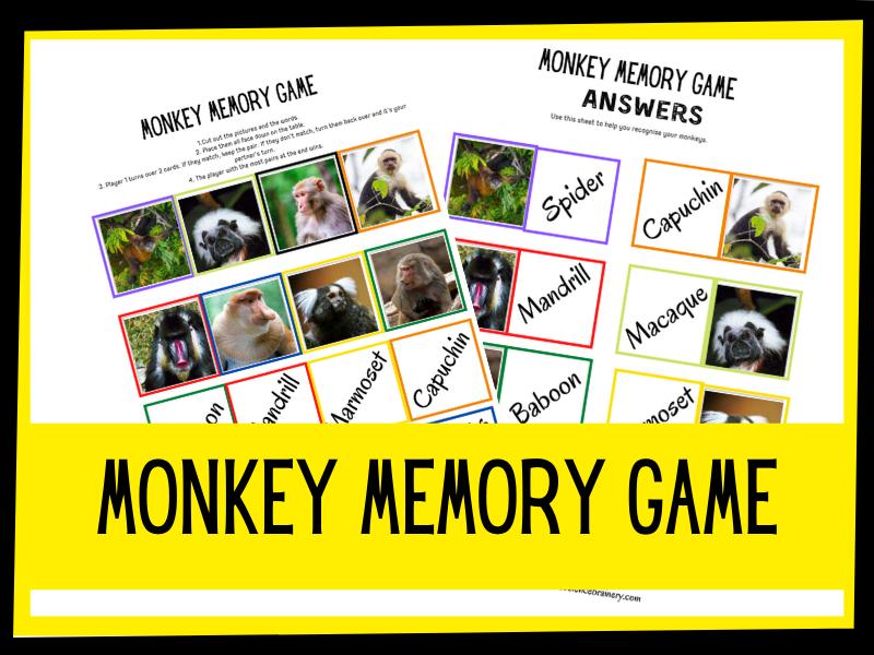 Monkey memory game - KS1 KS2 Primary Science