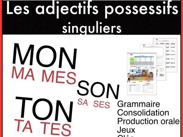 Les adjectifs possessifs (singuliers). FLÉ