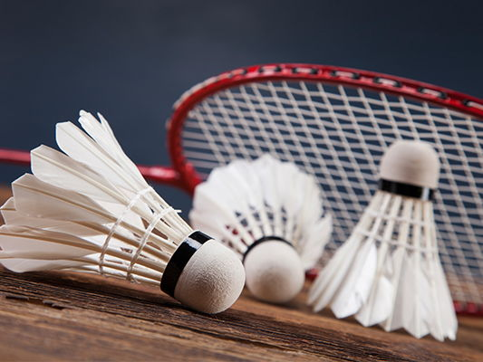 Badminton - 10 Weeks