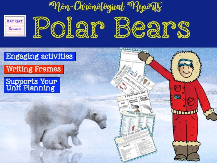 Non-chronological report writing - polar bears