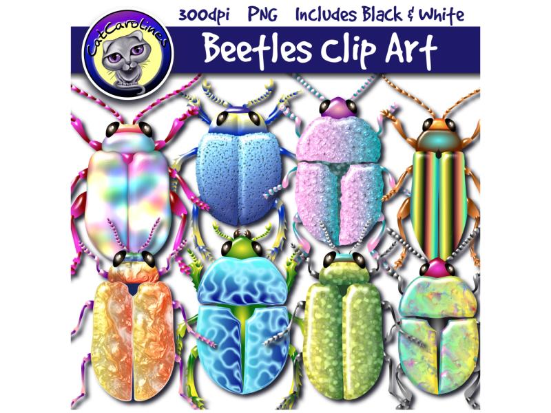 Beetles Clip Art