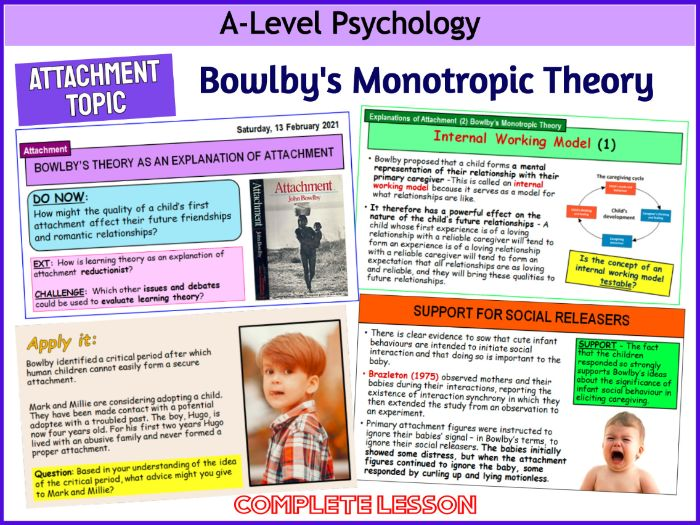 A-Level Psychology - BOWLBY'S THEORY AS AN EXPLANATION OF ATTACHMENT  (Year 1 Attachment)