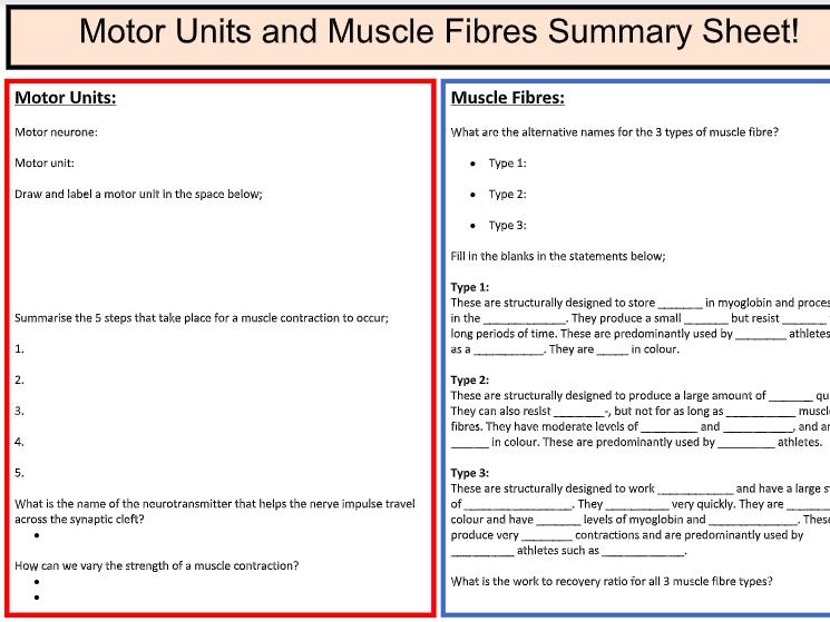 A-Level PE: Musc. Fibre / Motor Units Summary Sheet