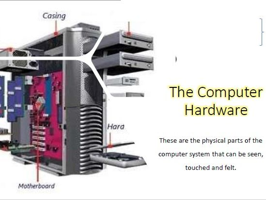 Computer Hardware: Input and Output Device