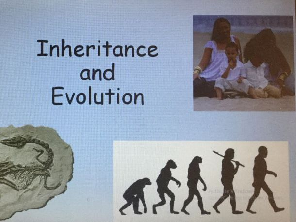 Year 6 Science evolution and inheritance