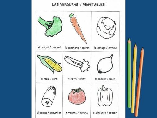 Bilingual Picture Dictionary - Español e Inglés - Spanish and English