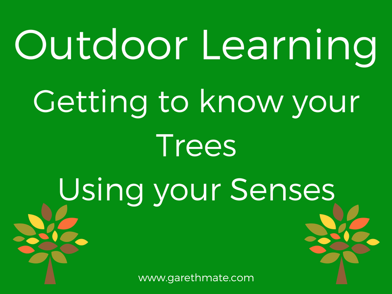 Outdoor Learning - Getting to know your Trees