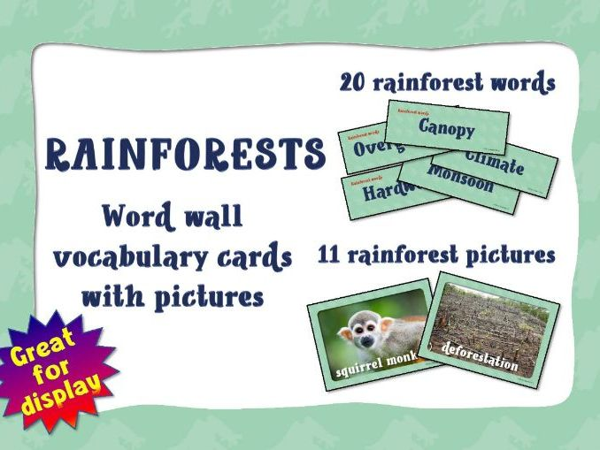 Rainforest words and pictures for class display