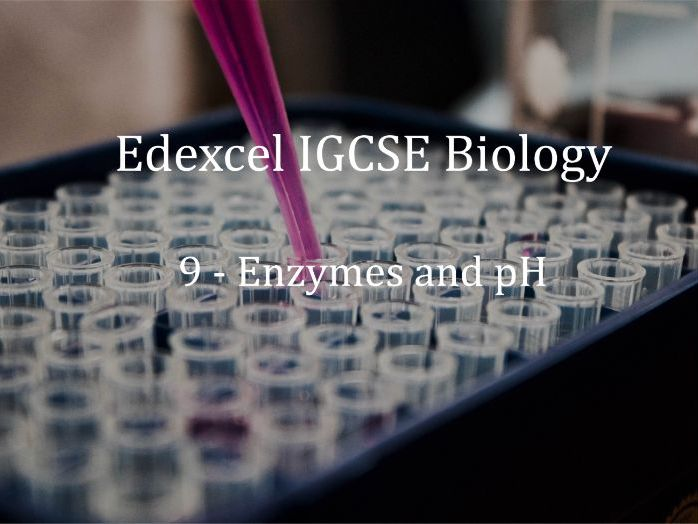 Edexcel IGCSE Biology Lecture 9 - Enzymes and pH