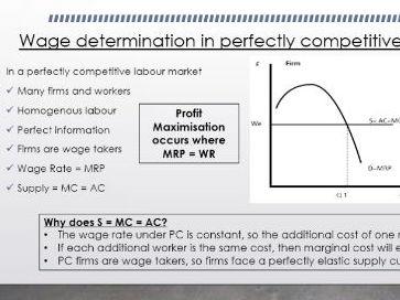 AQA A Level Economics - The Labour Market