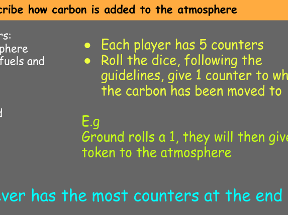 Carbon cycle game!