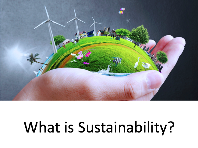 What is sustainability part 2 (focus on the fashion industry)