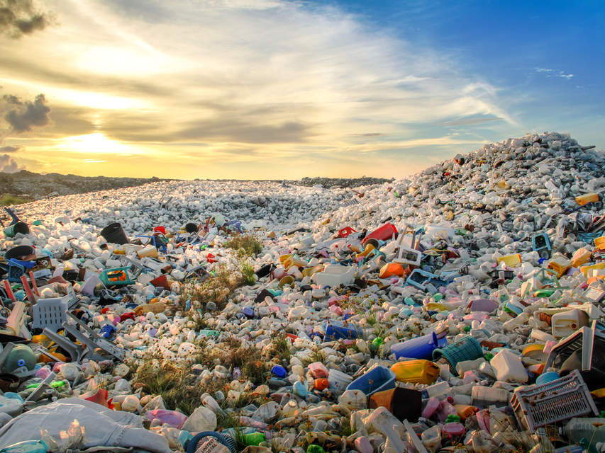 Project: How can we save the world from plastics? COVER WORK/HW/WORK FROM HOME.