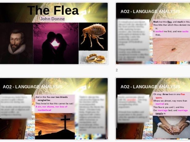 The Flea John Donne - English Literature