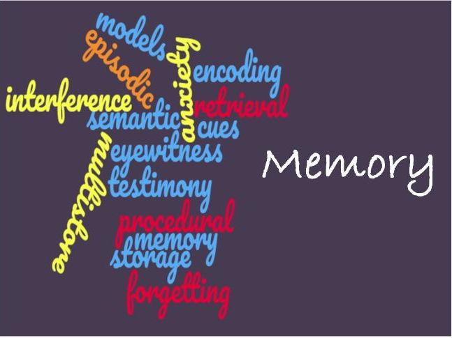 AQA psychology Memory Revision presentation