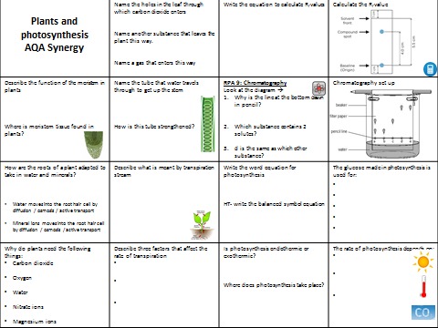 AQA Synergy Plants and photosynthesis revision