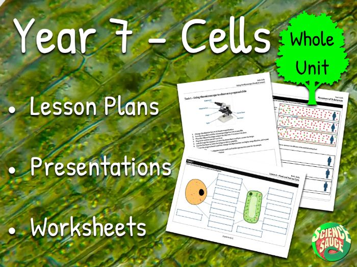 Year 7 - Cells (Whole Unit)