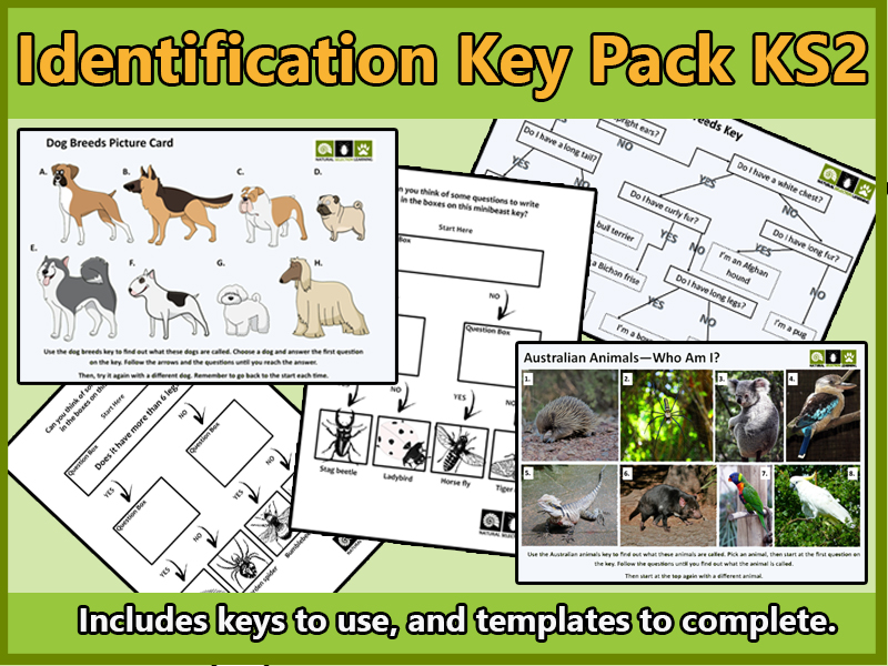 Identification Key Activities and Templates KS2