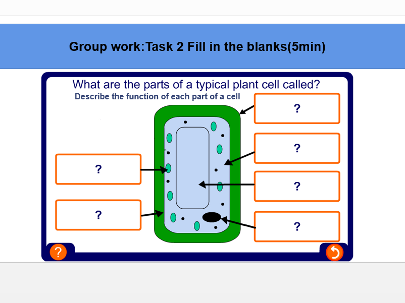 Year 7 Worksheets- Biology - Cells