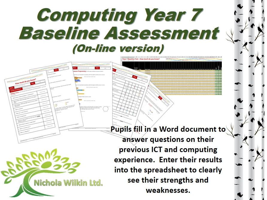 COMPUTING Year 7 Baseline Assessment (On-line version)