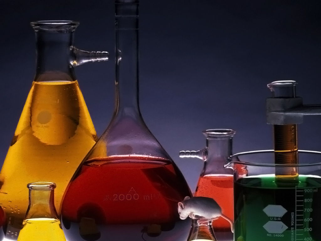 Organic synthesis practice