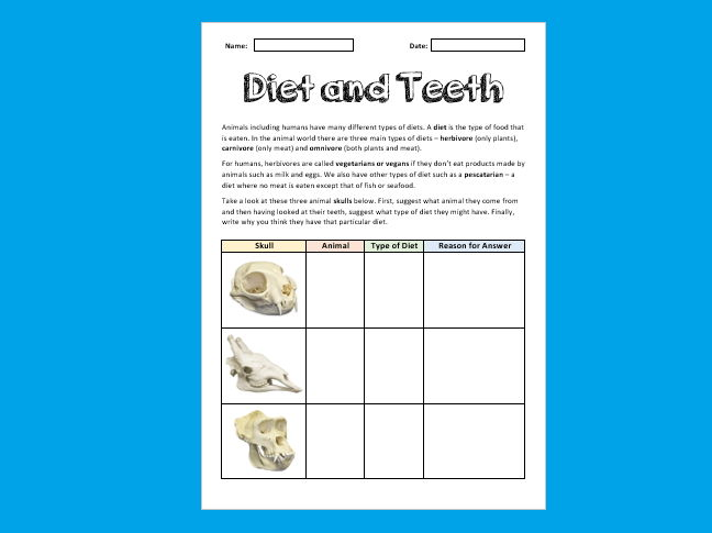 Diet and Teeth Worksheet [Suitable for Online Use]