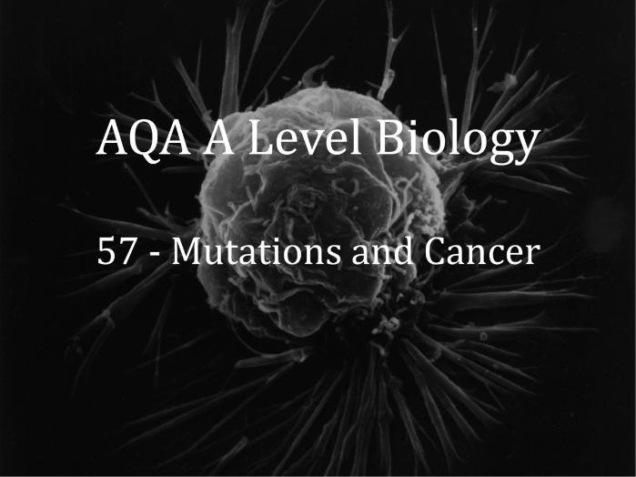AQA A Level Biology Lecture 57 - Mutations and Cancer