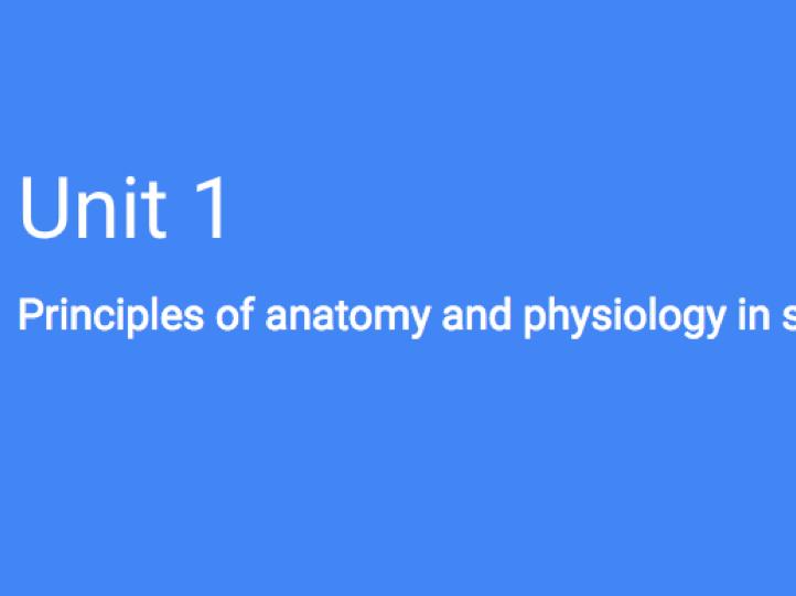 BTEC Sport L3 (OCR) - Unit 1 (Anatomy & Physiology) by Jbuxton1996 ...